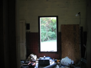 revelation! my bedroom window looks out onto the backyard!
