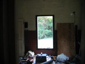 revelation! my bedroom window looks out onto the backyard!