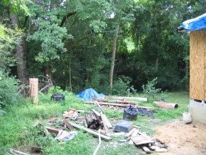 renovatin' is hard on the landscaping--what will be my bird-filled backyard sanctuary